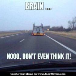 Jeep Crazyness